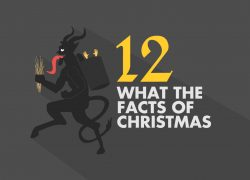 12 What The Facts Of Christmas